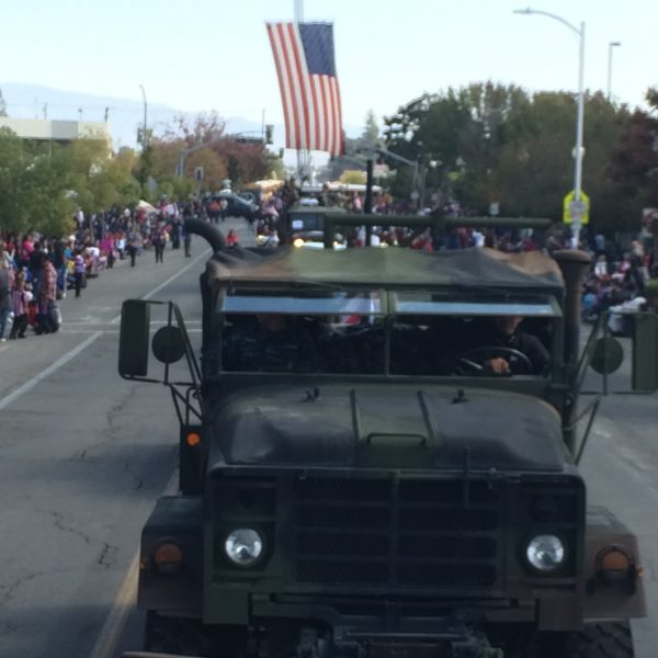 Veteran's Day Parade 2015